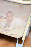 Baby girl in playpen. Cute baby girl with teddy bear toys playing in playpen Stock Images