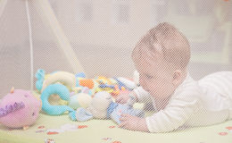 Baby girl in playpen. Playful baby girl in a playpen behind the mesh Stock Image