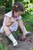 Baby girl plays with hedgehogs Stock Images