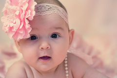 Baby girl portrait. Portrait of 3 months old baby girl on pink roses background Stock Image
