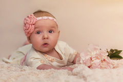 Baby girl portrait Stock Photo