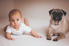 Baby girl with pug dog. New born baby girl with pug dog stock photography