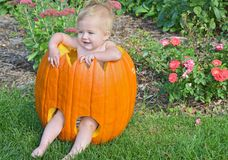 Baby girl in pumpkin Stock Images
