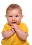 Baby girl putting hands in mouth. Cutout Stock Photography