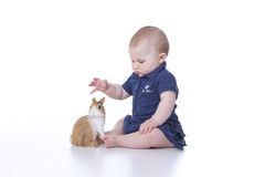 baby girl with rabbit Royalty Free Stock Photos