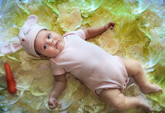 Baby girl in a rabbit hat laying among cabbage leaves. Baby girl in a rabbit hat calmly laying among cabbage leaves and carrot stock photo