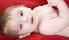Baby Girl on Red Royalty Free Stock Photo