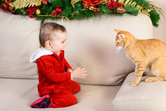 Baby girl and red cat Stock Image