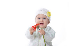 Baby girl  with red flower Stock Photography