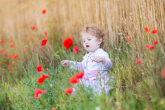 Baby girl with red poppy flowers in wheat field. Adorable baby girl playing with red poppy flowers in a wheat field Stock Photography