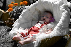Baby girl in a romanian traditional cute little dress portrait Stock Photos