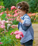 Baby girl in rose garden Stock Photo