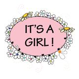 Baby girl. It`s a girl.Baby shower greeting card. Colorful Daisy flower banner. Background Stock Images