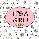Baby girl. It`s a girl.Baby shower greeting card. Colorful Daisy flower banner. Background Stock Photos