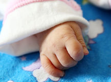 Baby girl's hand. Royalty Free Stock Images