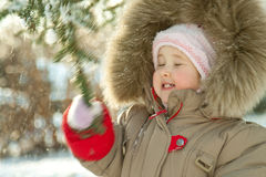 The baby girl shaking a branch of fir Stock Images