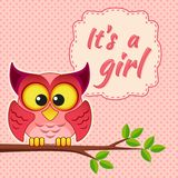 Baby girl shower card with owl on branch. It`s a girl. Vector greeting card Royalty Free Stock Photos