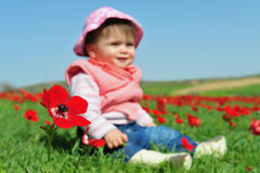 Baby Girl Sitting in Flowery Field royalty free stock images