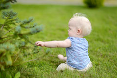 Baby girl sitting on a reen grass Stock Photo