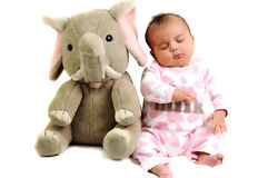Baby girl with sitting and sleeping with elephant. Baby girl with pink dots suite sitting and sleeping with gray elephant toy next to her Royalty Free Stock Photo