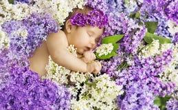 Baby Girl Sleep in Lilac Flowers, Sleeping Newborn Child Stock Images
