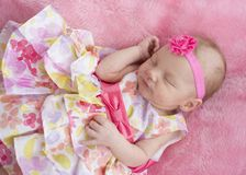 Baby Girl Sleeping in Floral Dress royalty free stock photos