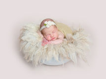 Baby girl sleeping on huge soft fury pillow Stock Photography