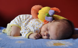 Baby girl sleeping with a plush toy Royalty Free Stock Photo