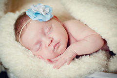Baby girl sleeps on a blanket Royalty Free Stock Images
