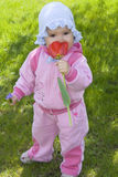 Baby girl sniffing at the flower. Baby girl standing on the grass and sniffing at the flower royalty free stock images