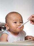 Baby starting on solids 3 Royalty Free Stock Image