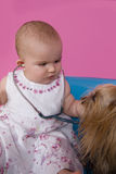 Baby girl with stethoscope. Little Yorkshire terrier dog being examine by a  seven months old baby girl Royalty Free Stock Images