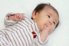 Baby girl sucking her fingers Stock Photo