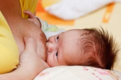 Baby girl sucking at her mother's breast Stock Photography