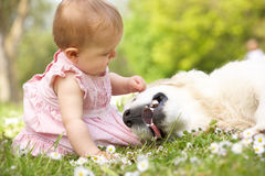 Baby Girl In Summer Dress Sitting In Field Royalty Free Stock Photography