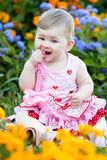 Baby girl at summer park Stock Images