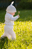 Baby girl in a summer park Stock Images