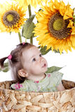 Baby girl in sunflowers Royalty Free Stock Photography