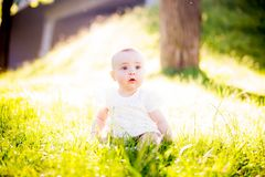 Baby girl on a sunny meadow portrait Royalty Free Stock Photo