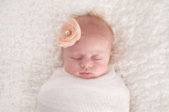 Baby Girl Swaddled in White Royalty Free Stock Image