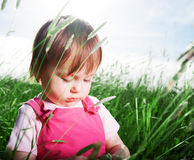 Baby girl in tall grass Royalty Free Stock Photography