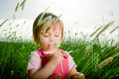 Baby girl in tall grass Stock Photos