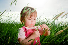 Baby girl in tall grass. A portrait of a little baby girl, sitting and playing in tall grass stock photography