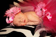 Baby Girl in Tutu stock photos