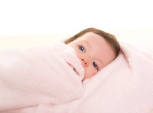 Baby girl under hidden pink blanket on white fur Royalty Free Stock Photography