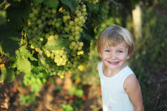 Baby girl in vineyard Stock Image