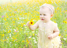 Baby girl walking in flowers Royalty Free Stock Photography