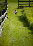 Baby girl walking through path Stock Image