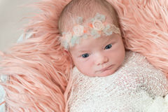 Baby girl watching, wearing hairband, topview Stock Photos