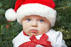 Baby girl wearing a Santa Claus hat and Christmas tree Stock Photography